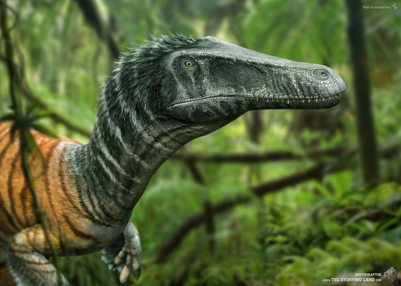 Austroraptor. The Stomping Land. 03 by Swordlord3d.deviantart.com on @DeviantArt