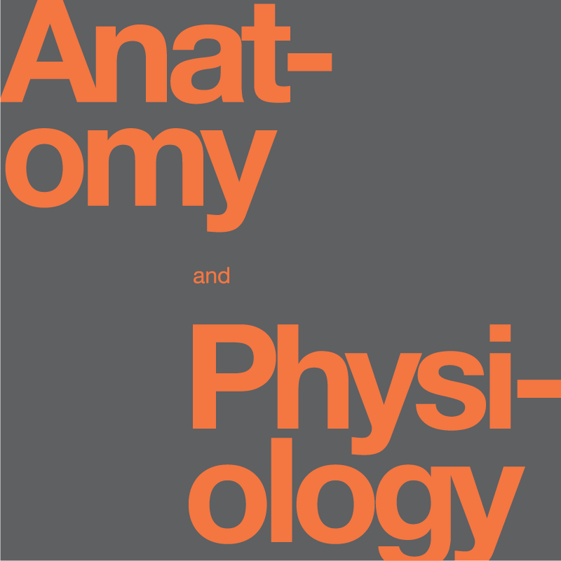 ANATOMY AND PHYSIOLOGY, MASTER THIS YEAR\'S, CLASS SPECIAL PRICE ON ...