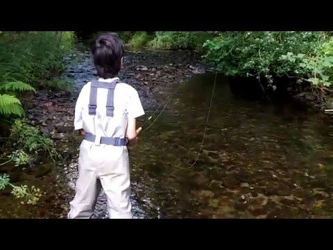 Fly Fishing On The River Yealm In South Devon Fly Fishing South Devon Fish