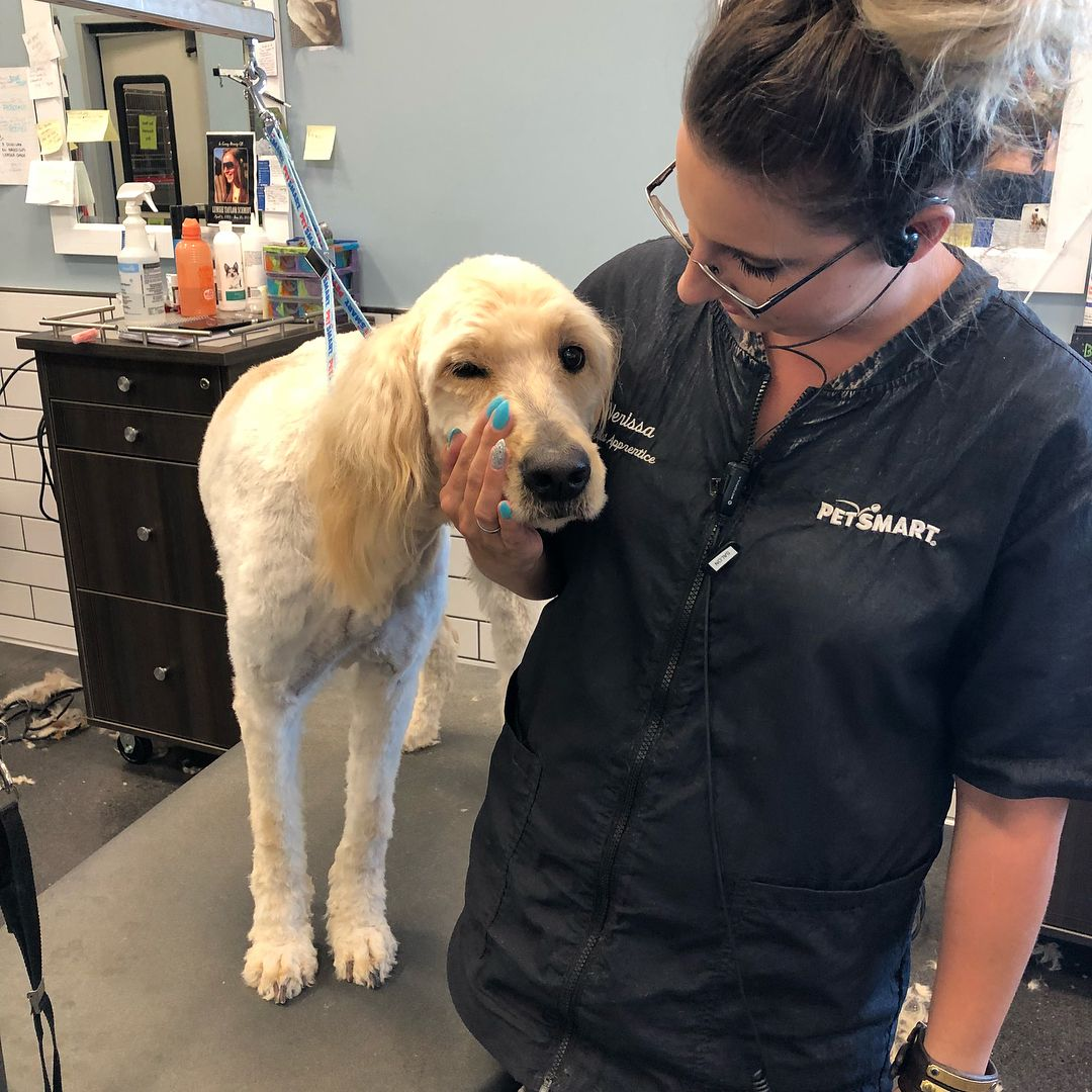 Jackson The Goldendoodle And One Of My Most Favourite Clients