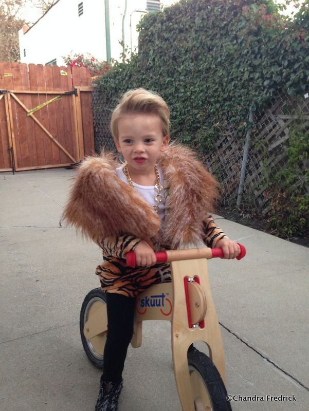 mini macklemore a halloween wrap up homemade halloween costumes