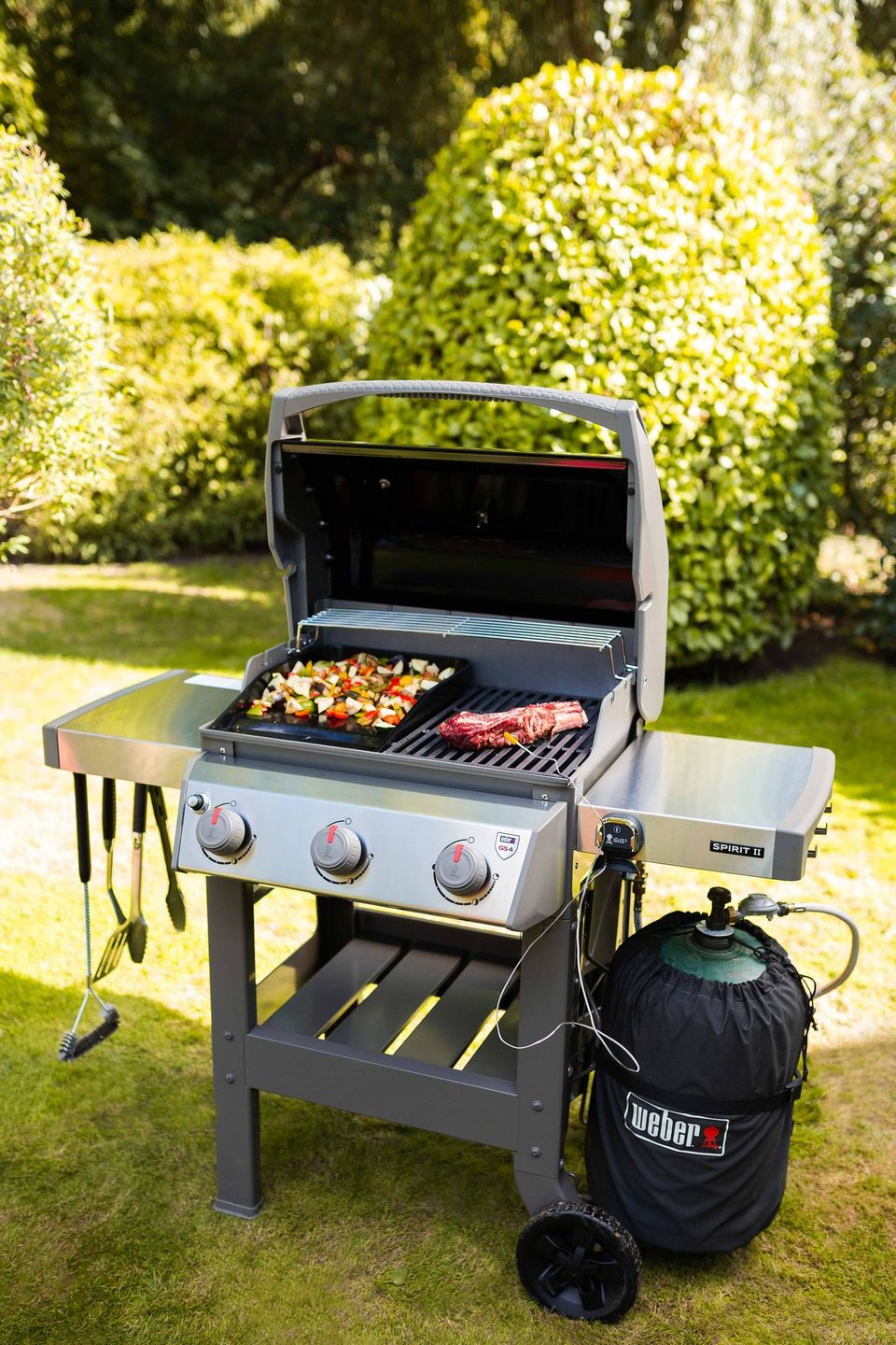 Weber Barbecue Spirit II E 310 Gas Grill mix + plancha