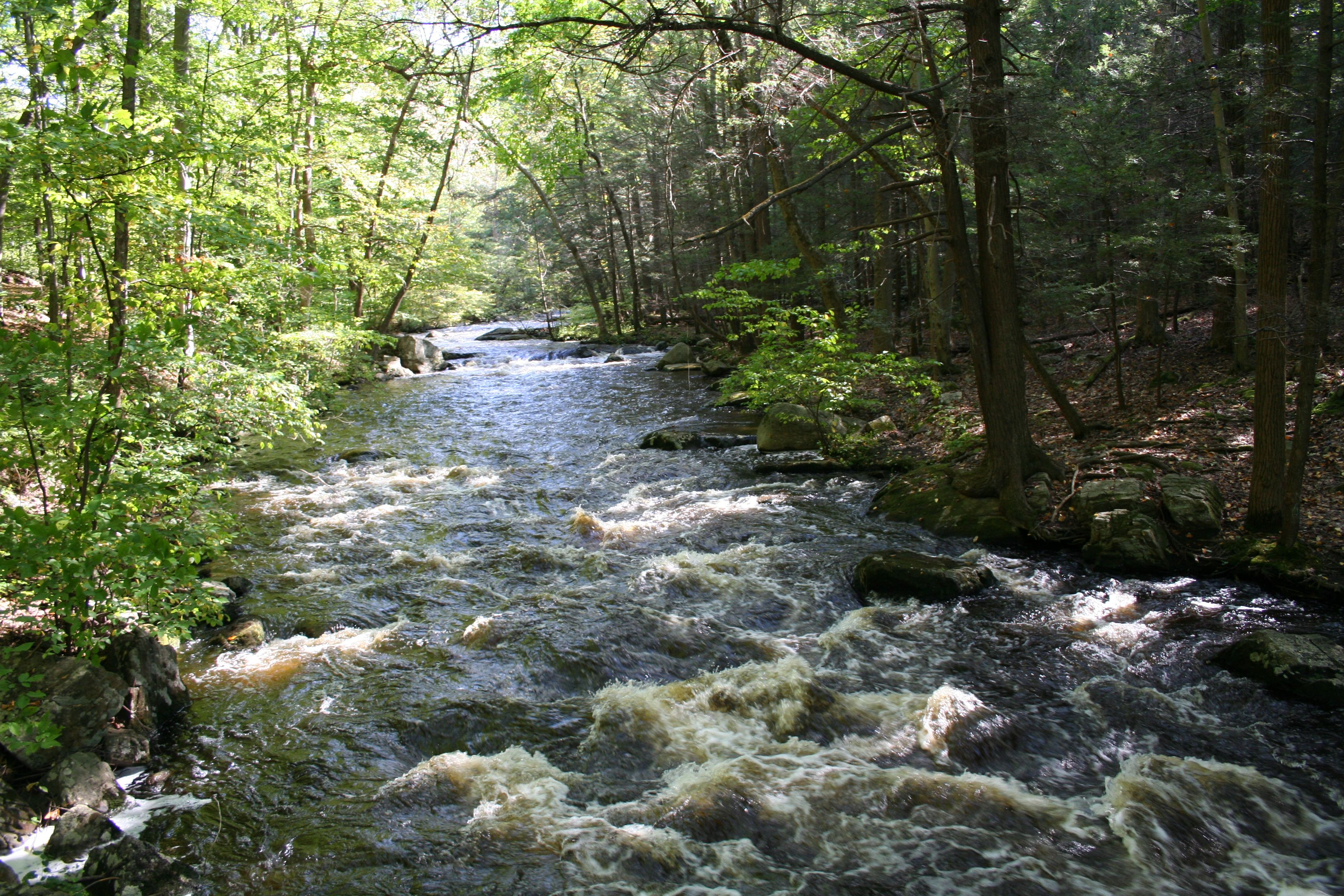 The Black River In Hacklebarney State Park, Long Valley