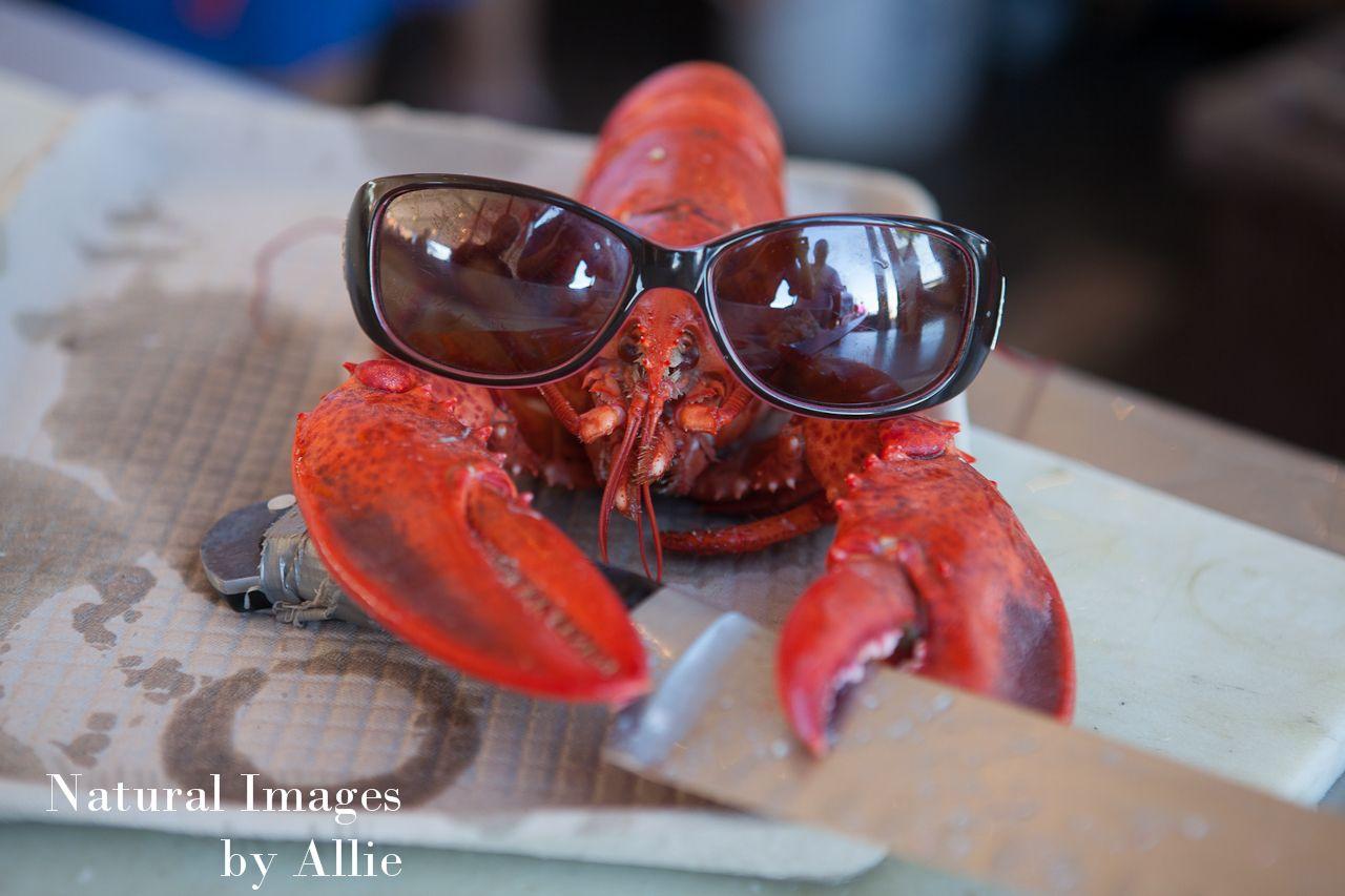 Annual Hampton Beach Seafood Festival