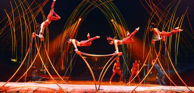 Behind The Scenes At Cirque Du Soleil S Amaluna Cirque Du Soleil Cirque Scenes