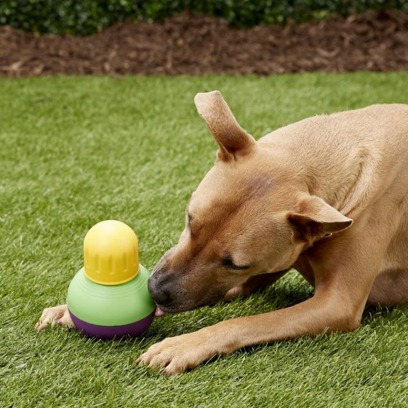Interactive Dog Toys This mentally stimulating puppy toy helps lazy pooches exercise — and it's half off!