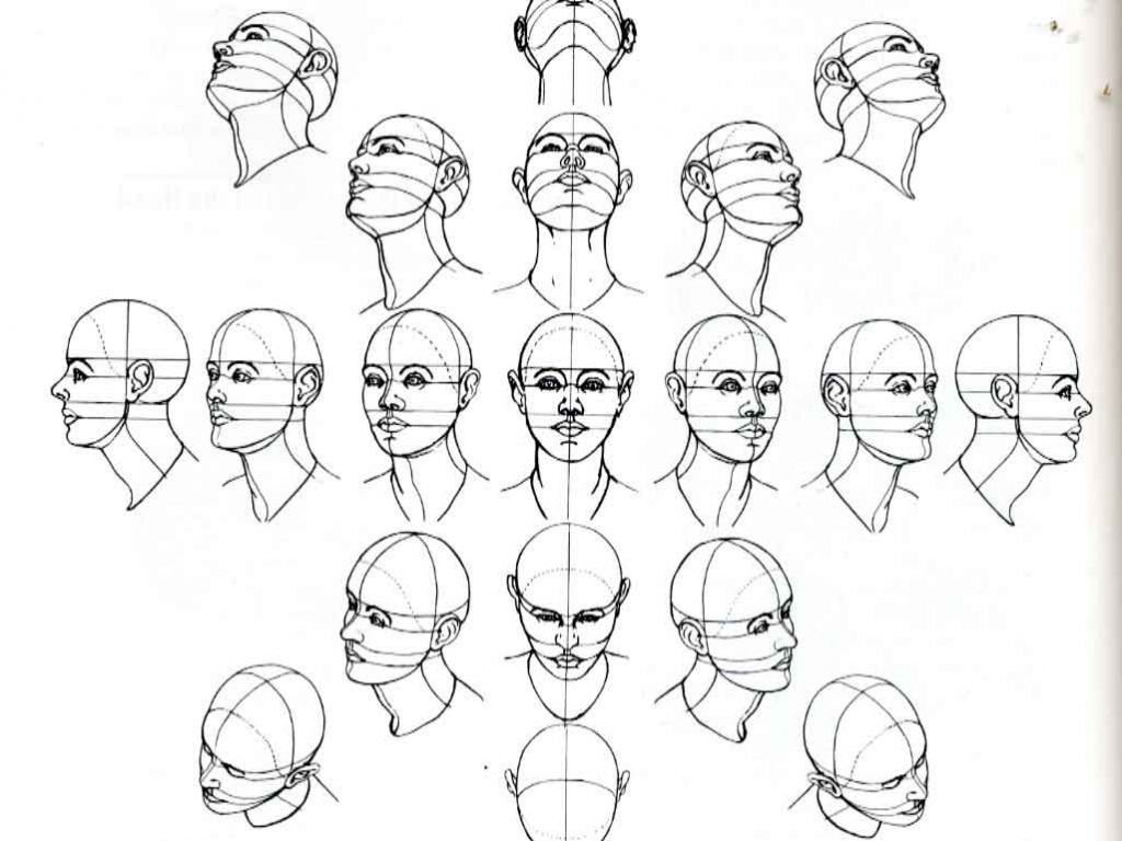 Image Result For Face Looking Up Drawing The Human Head Human Drawing Sketches