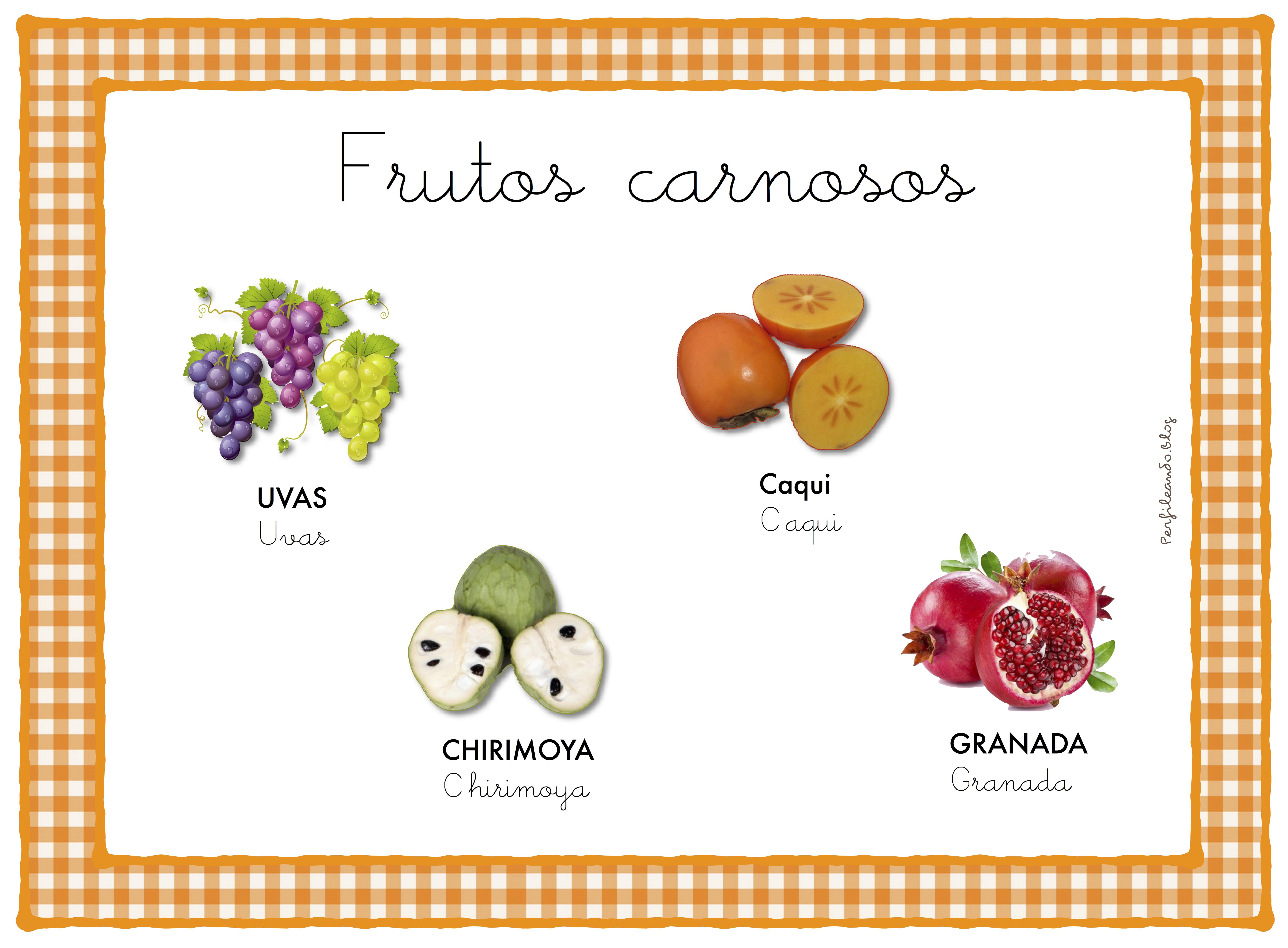 Frutos carnosos otoño. | Otoño, Manualidades, Escolares
