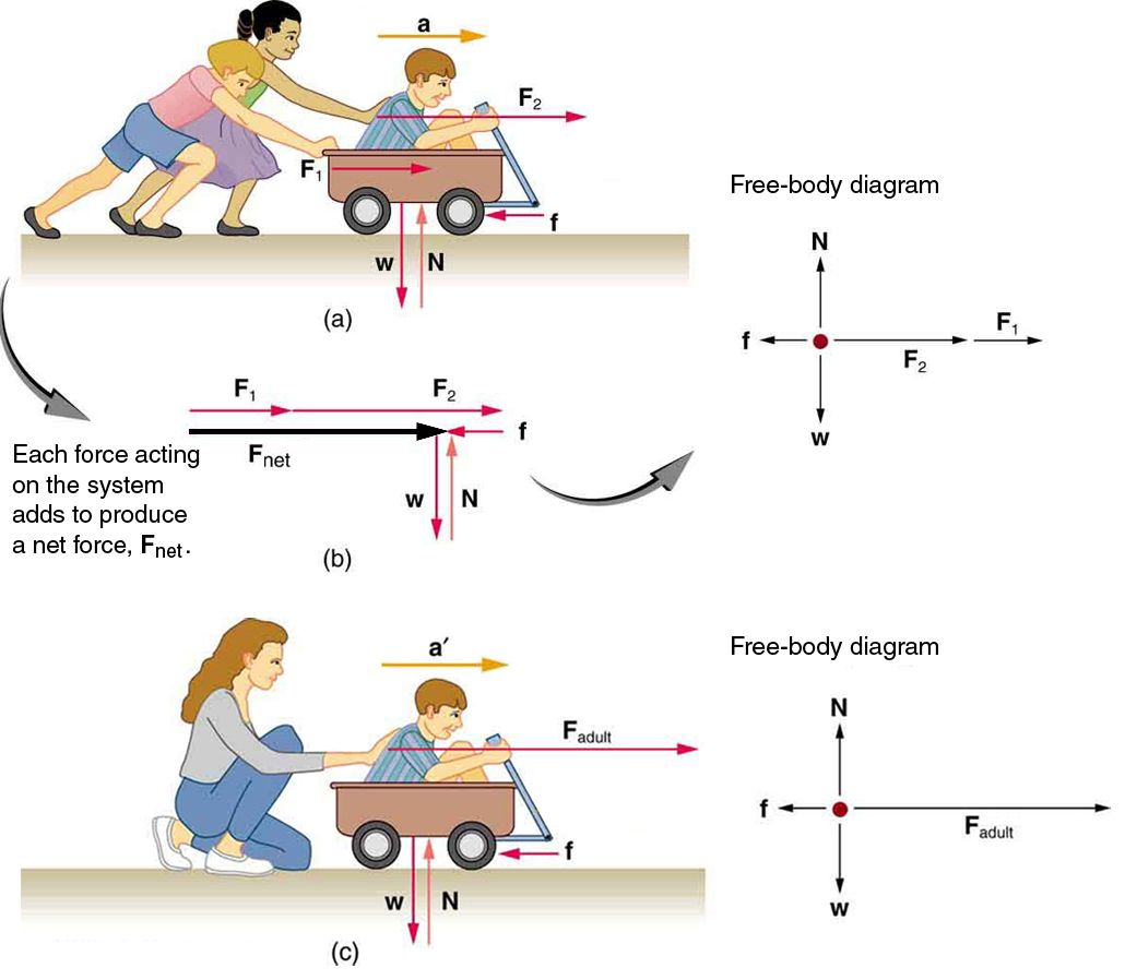 This Digram Shows That By The Two People Pushing On The