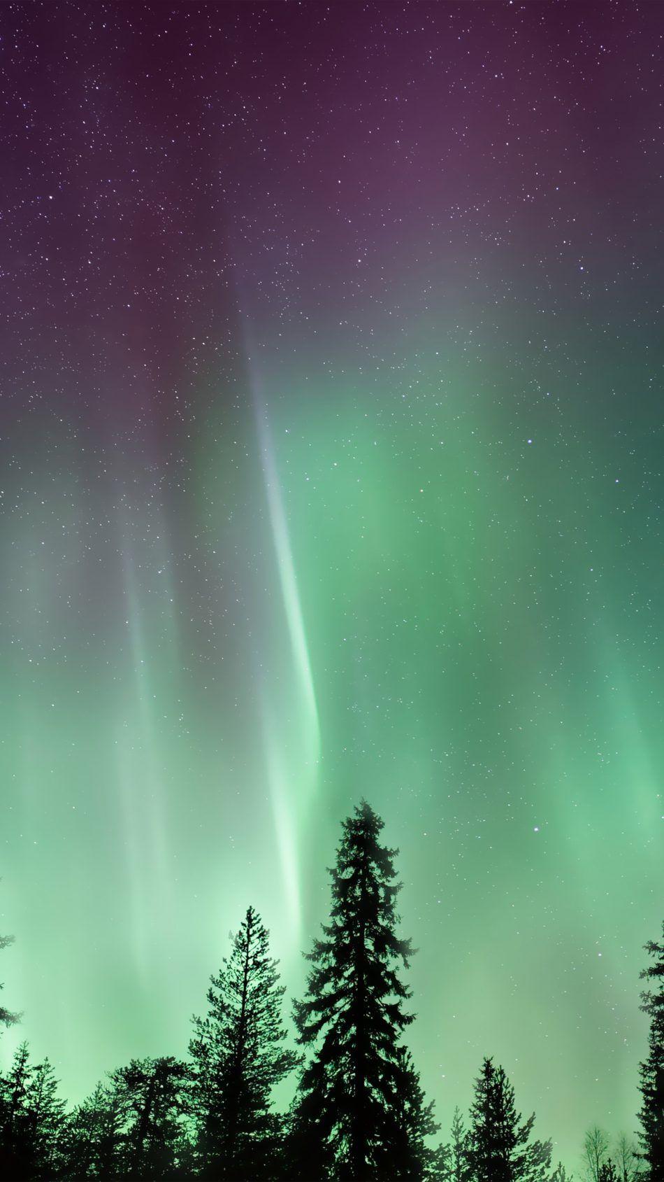 Download Amazing Northern Lights Aurora Borealis Free Pure