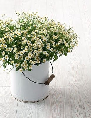 Sure I have seen a plant or flowers potted in something like this at one of my Grandmother's houses