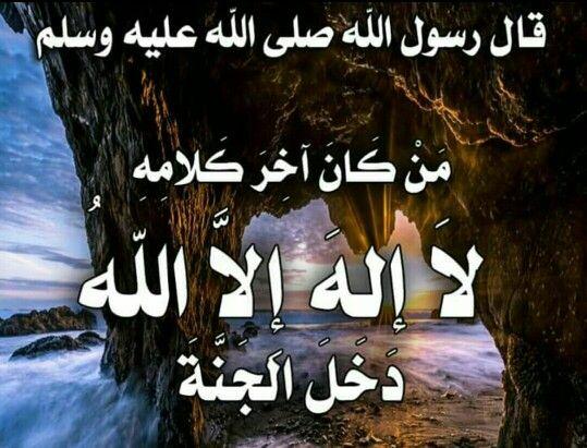 من كان آخر كلامه لا إله إلا الله دخل الجنة