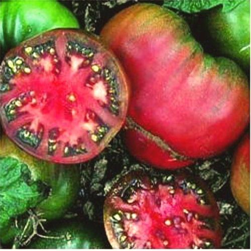 Tomato Black Krim Certified Organic Black Krim Interior 640 x 480