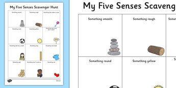 Five Senses Scavenger Hunt Worksheet - Science, Habitats ...