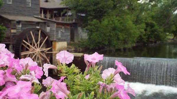 292d08ee3f64010e3308ce011f93c78d - Silver Springs Gardens Eau Claire Wi