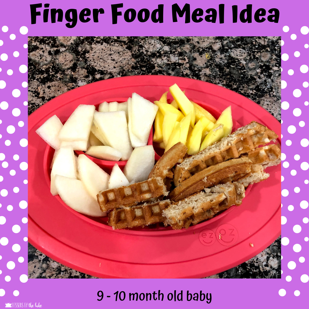 9 Month Baby Finger Food in 2020 | Baby food recipes ...