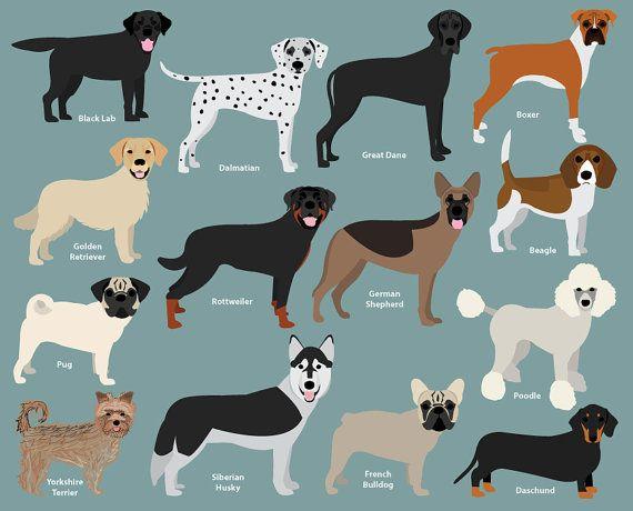 Dog Clipart Popular Breeds Revised French Bulldog Labrador