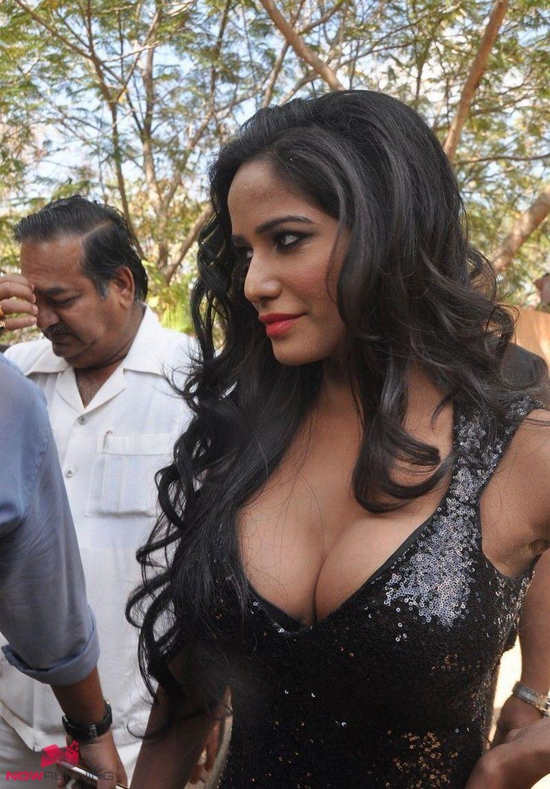 poonam pandey hot @ malini and co press meet | bollywood actresd