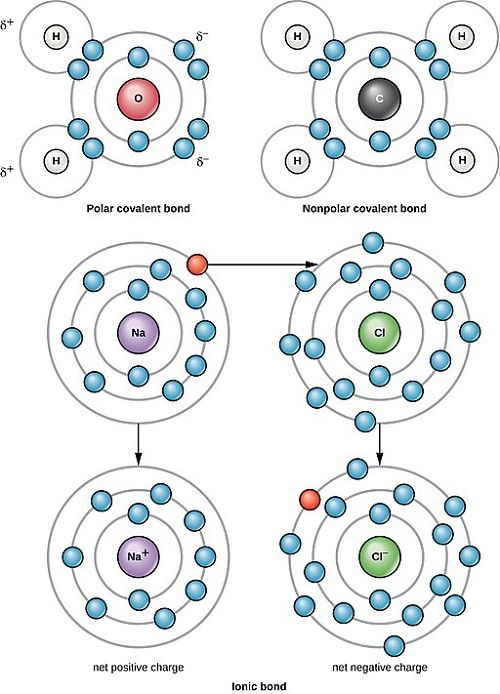Non Polar And Polar Covalent Bonds Teaching Chemistry Science Chemistry Chemistry Lessons