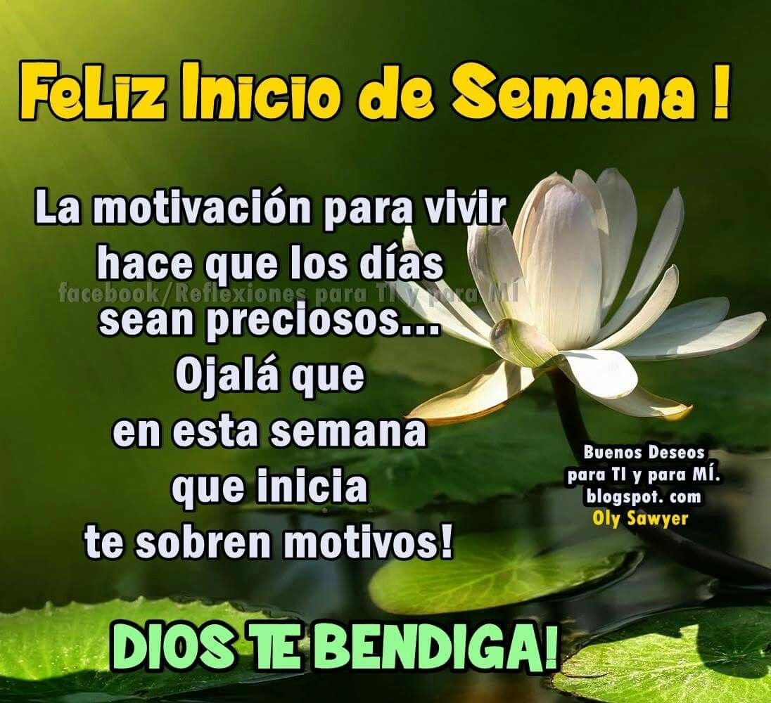 Inicio De Semana Dios Bendiga Tu Día Happy Week Happy Y