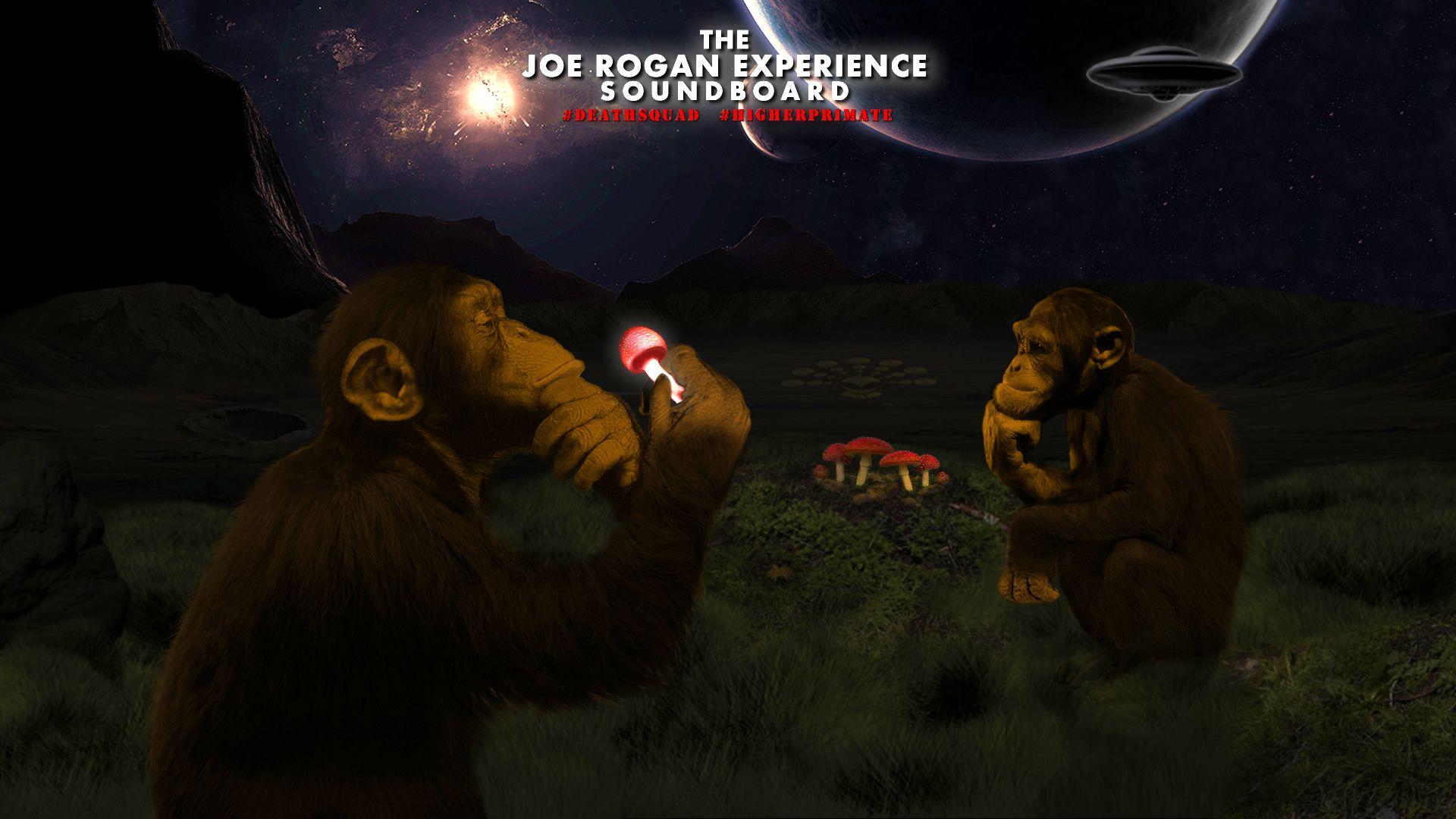 The Joe Rogan Experience Soundboard Wow How Cool Http Www Jresoundboard Com Joe Rogan Experience Joe Rogan The Joe