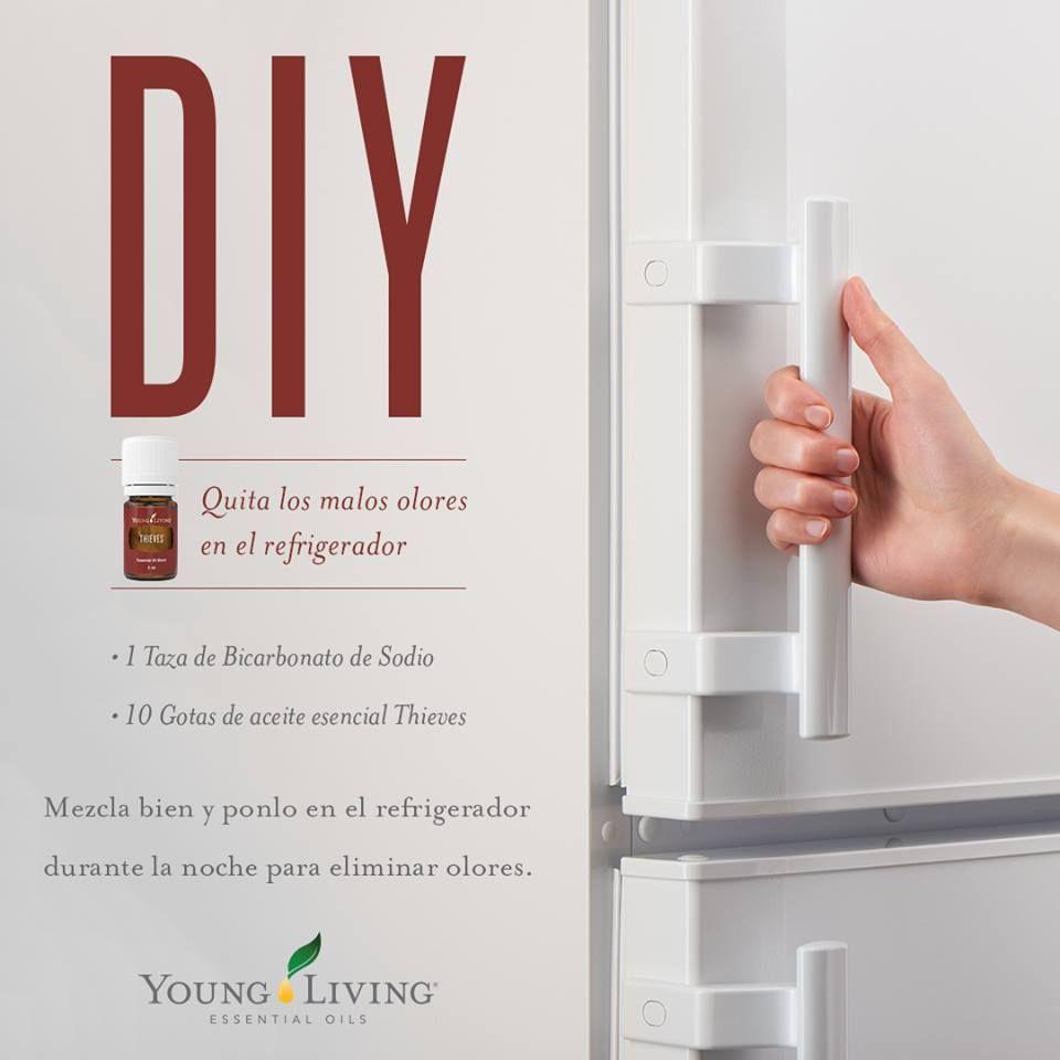 Remedio Casero Para Quitar El Mal Olor Del Refrigerador Y Refrescar El Area C Recetas De Aceites Esenciales Aceites Para Estar Joven Guía De Aceites Esenciales