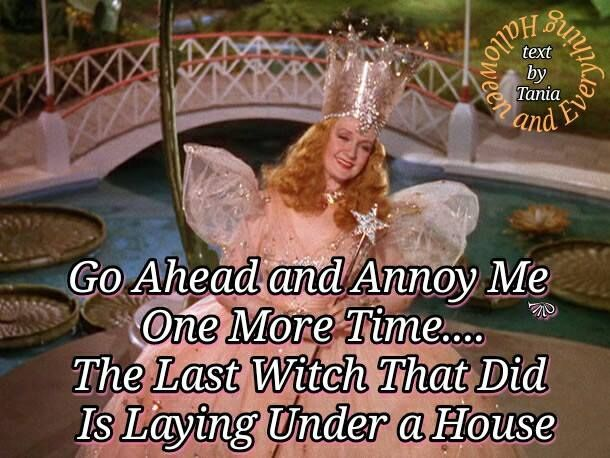 You Don T Mess With Glinda Glinda The Good Witch The Worst