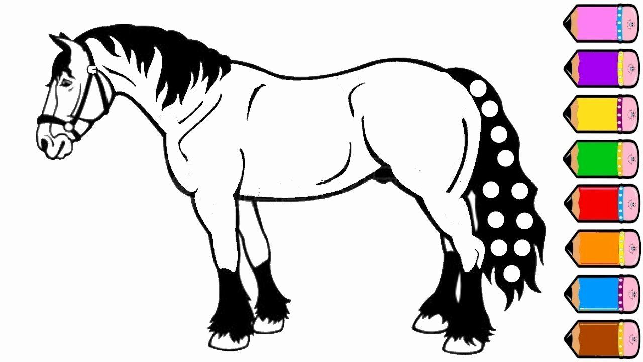 Horses Coloring Pages For Adults Best Of Horse Drawing Pages At Paintingvalley Horse Coloring Pages Horse Coloring Drawing For Kids
