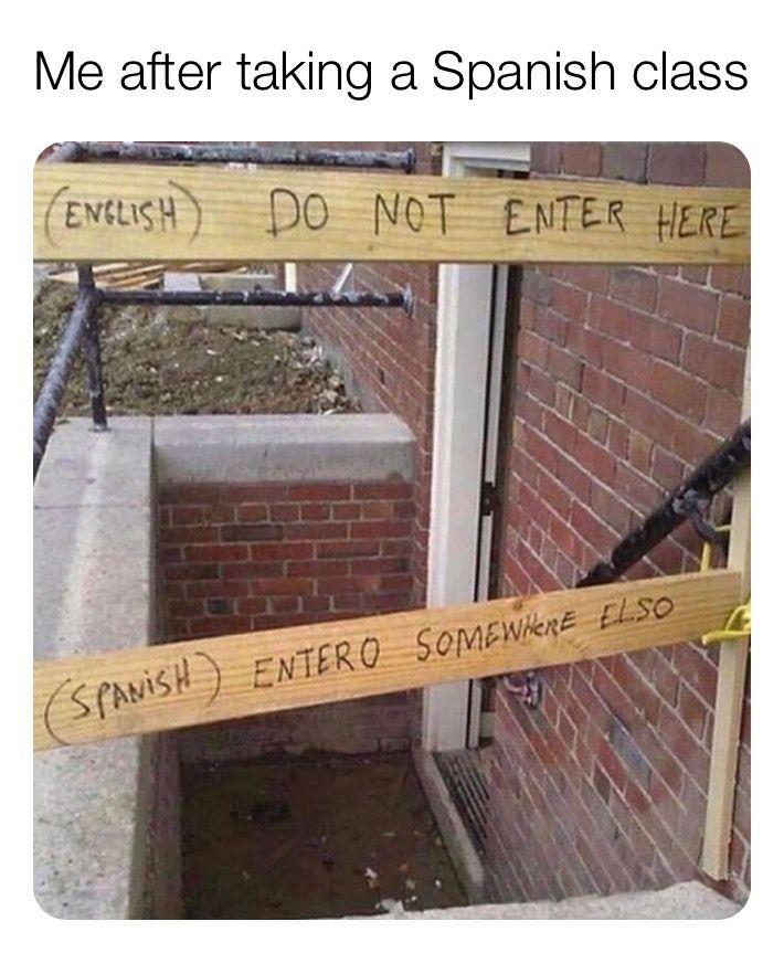 Being Translator Meme Jpg Student Memes Job Humor Translation