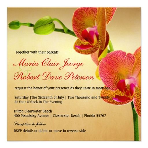$$$ This is great for          Orange Orchids Tropical Beach Destination Wedding Personalized Invitations           Orange Orchids Tropical Beach Destination Wedding Personalized Invitations This site is will advise you where to buyReview          Orange Orchids Tropical Beach Destination W...Cleck Hot Deals >>> http://www.zazzle.com/orange_orchids_tropical_beach_destination_wedding_invitation-161928421867183084?rf=238627982471231924&zbar=1&tc=terrest