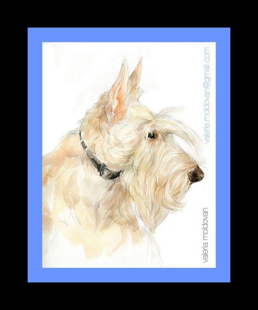 <3 Wheaten Scottish Terrier <3,   exceptional artwork of gifted artist, Valerie (Valeria) Moldovan