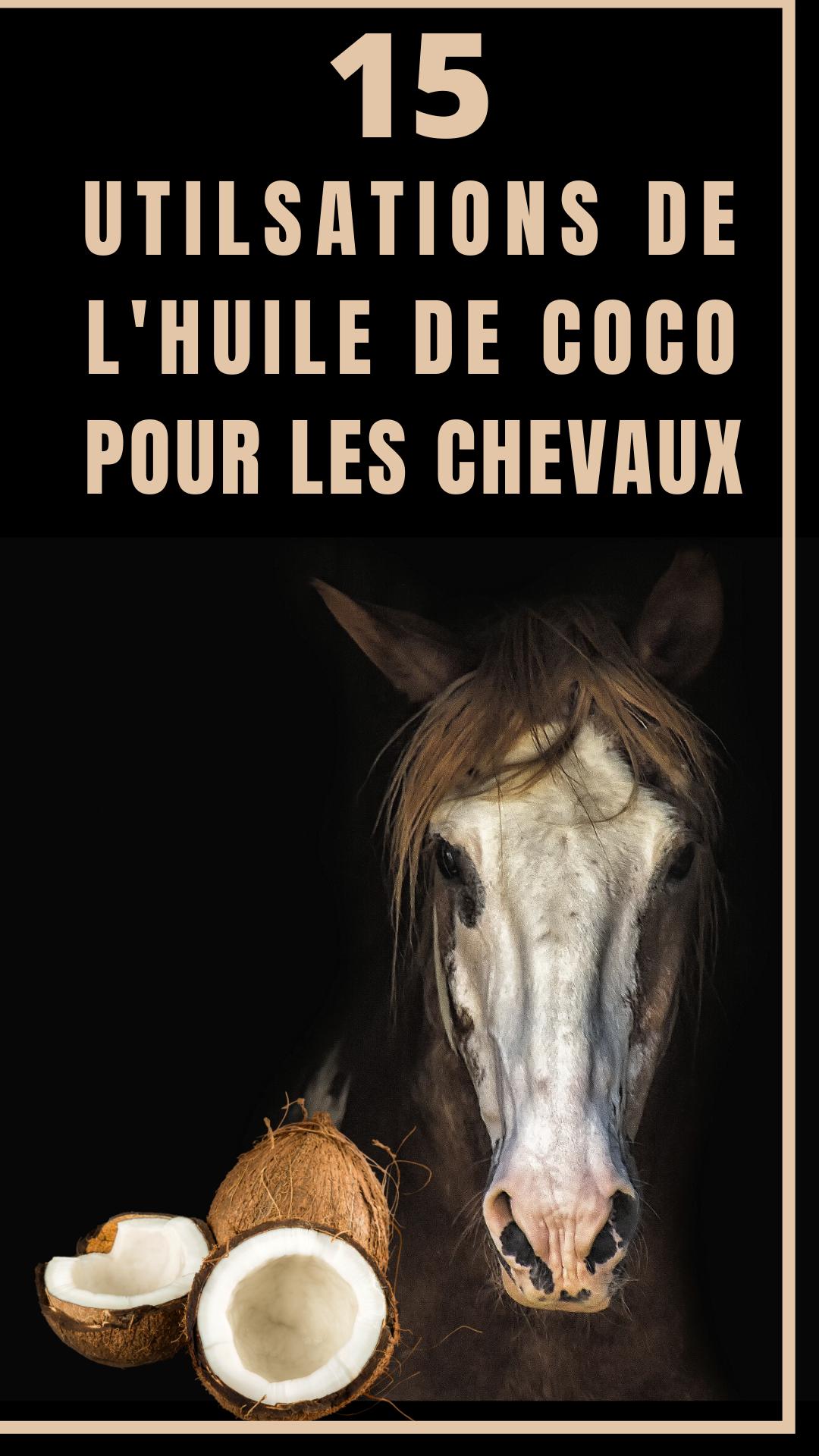 L Huile De Coco A De Nombreuses Vertus Pour Le Cheval On L Oublie Souvent Mais C Est Un Produit Naturel Et Peu Couteux Qui Rend Bi En 2020 Cheval Huile De Coco Huile