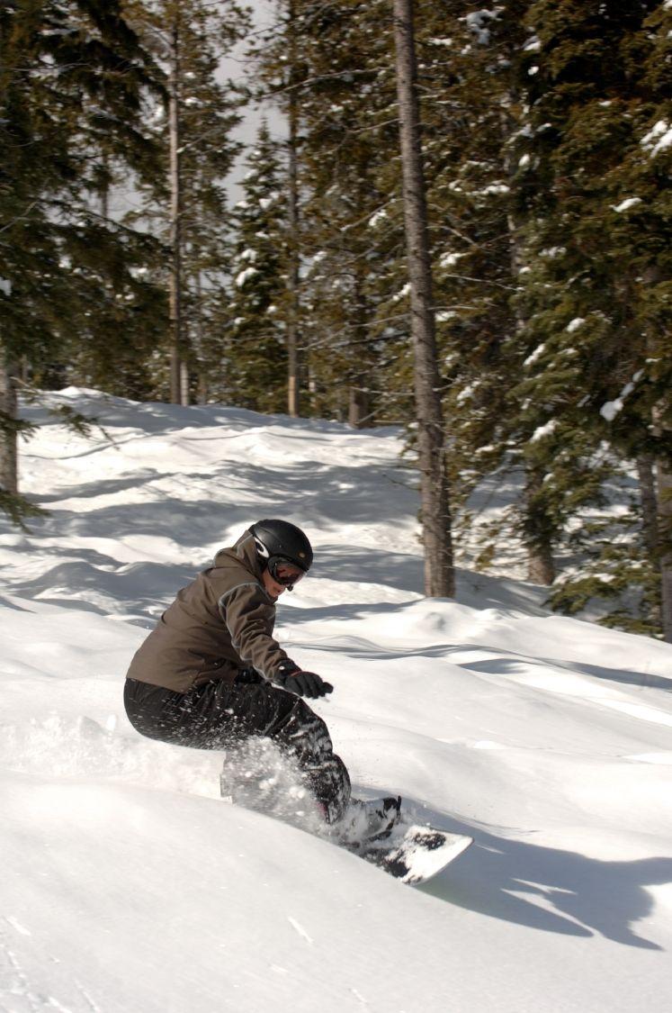 Snowboarder carving snow at Kimberley Alpine Resort