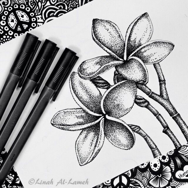 Frangipani Plumeri Flower Pointillism Style Stippling Art Pen