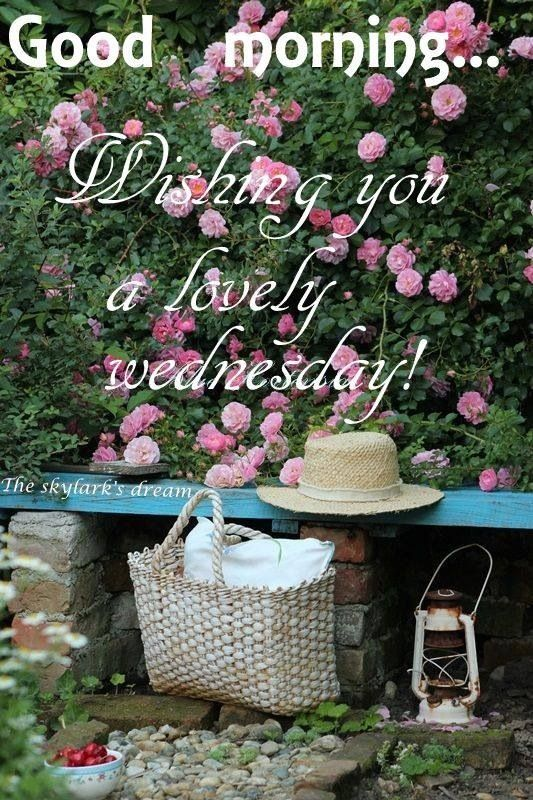 Wishing You A Lovely Wednesday Good Morning Wishes