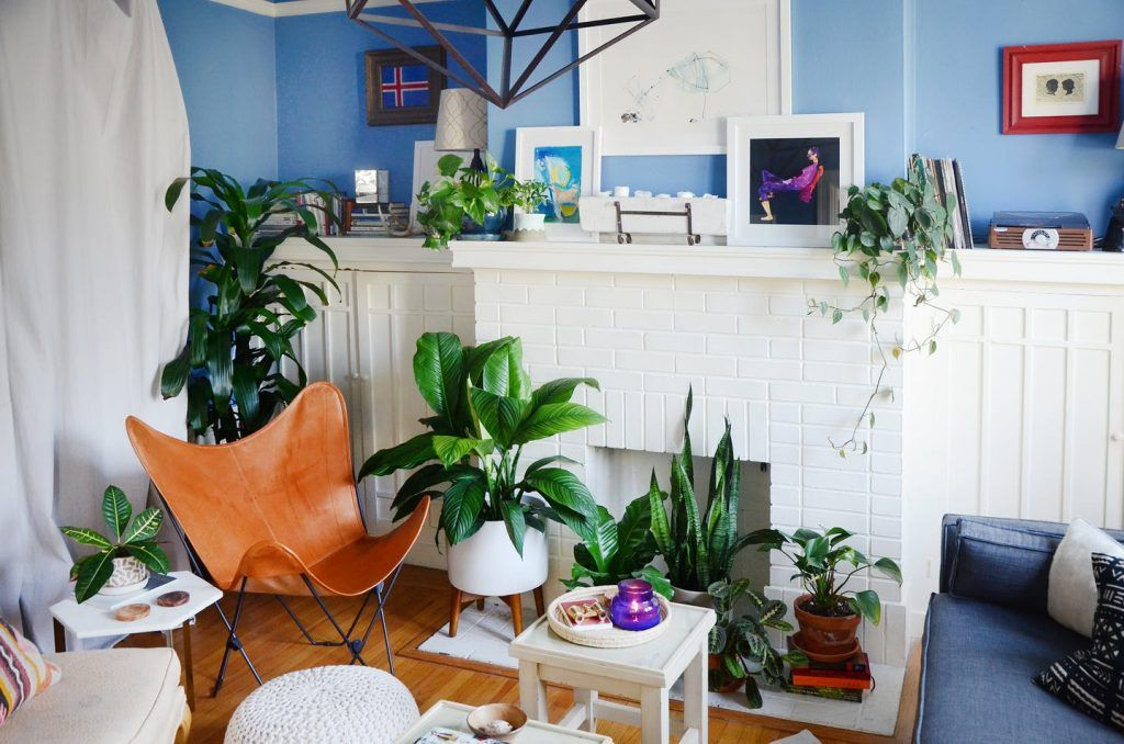 A Small PlantFilled Home in San Francisco Home decor