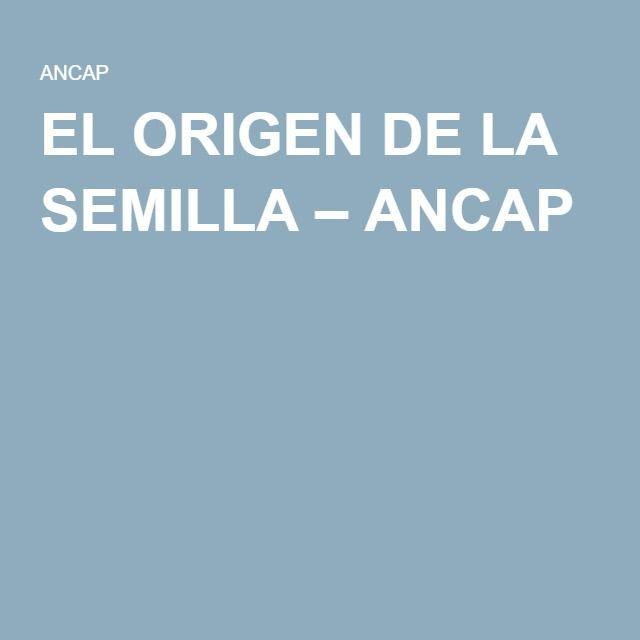 EL ORIGEN DE LA SEMILLA – ANCAP