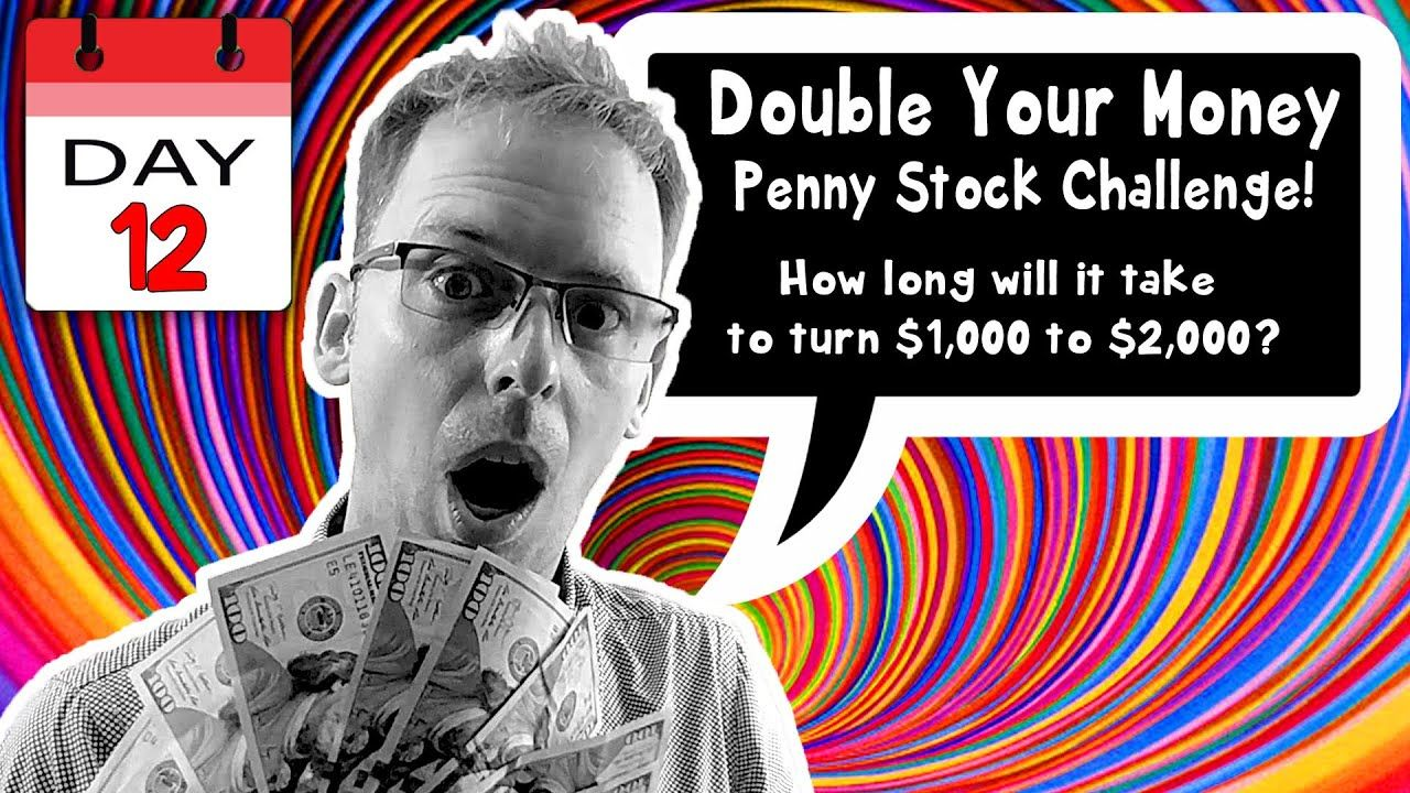 Day 12 32520 1000 penny challenge best stocks to