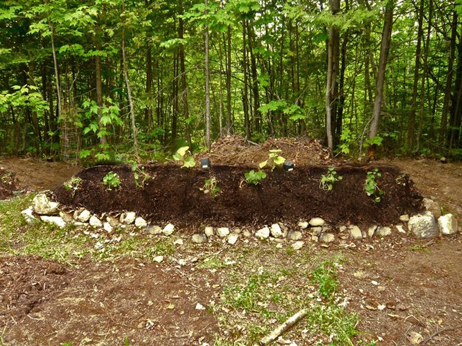 Hugelkultur Hugelkultur The Ultimate Raised Garden Beds