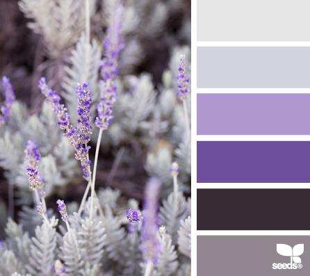 Lavender Tones Design Seeds Lavender Color Palette Purple Color Schemes Design Seeds