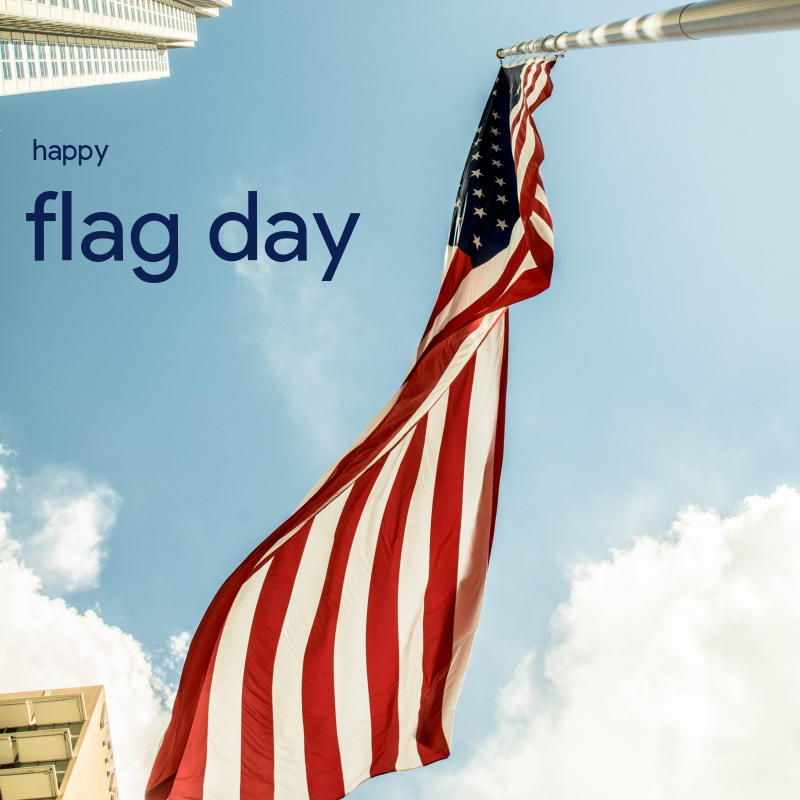 The Stars And Stripes Were Adopted As The Official Us Flag On This Day In 1777 Pride Freedom Symbol Flagd Flag Store United States Flag Us Flags