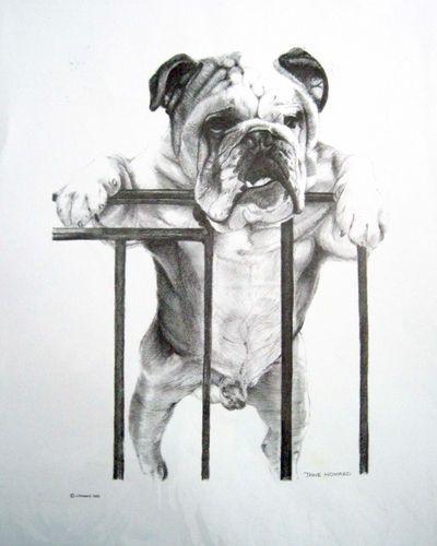 Bulldog At Gate Print Ebay Bulldog Artwork Bulldog Art Bulldog