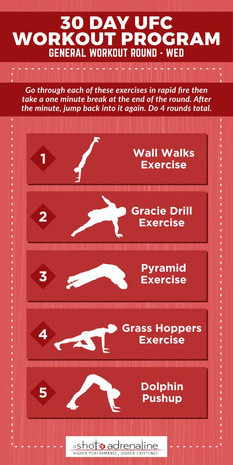 Ufc Workout Plan : workout, Workout, Program, General, Workout,, Fighter, Training
