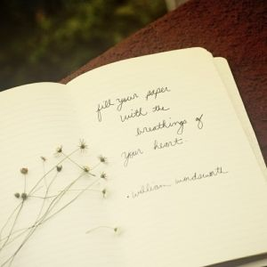 """william wordsworth : """"fill your paper with the breathings of your heart."""""""