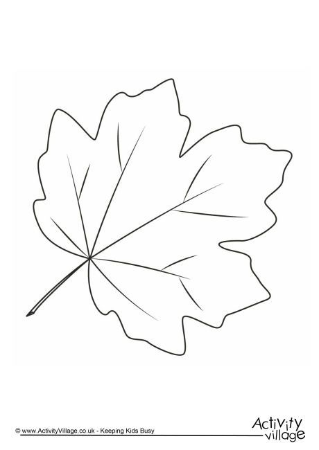 Autumn Leaf Colouring Page 3