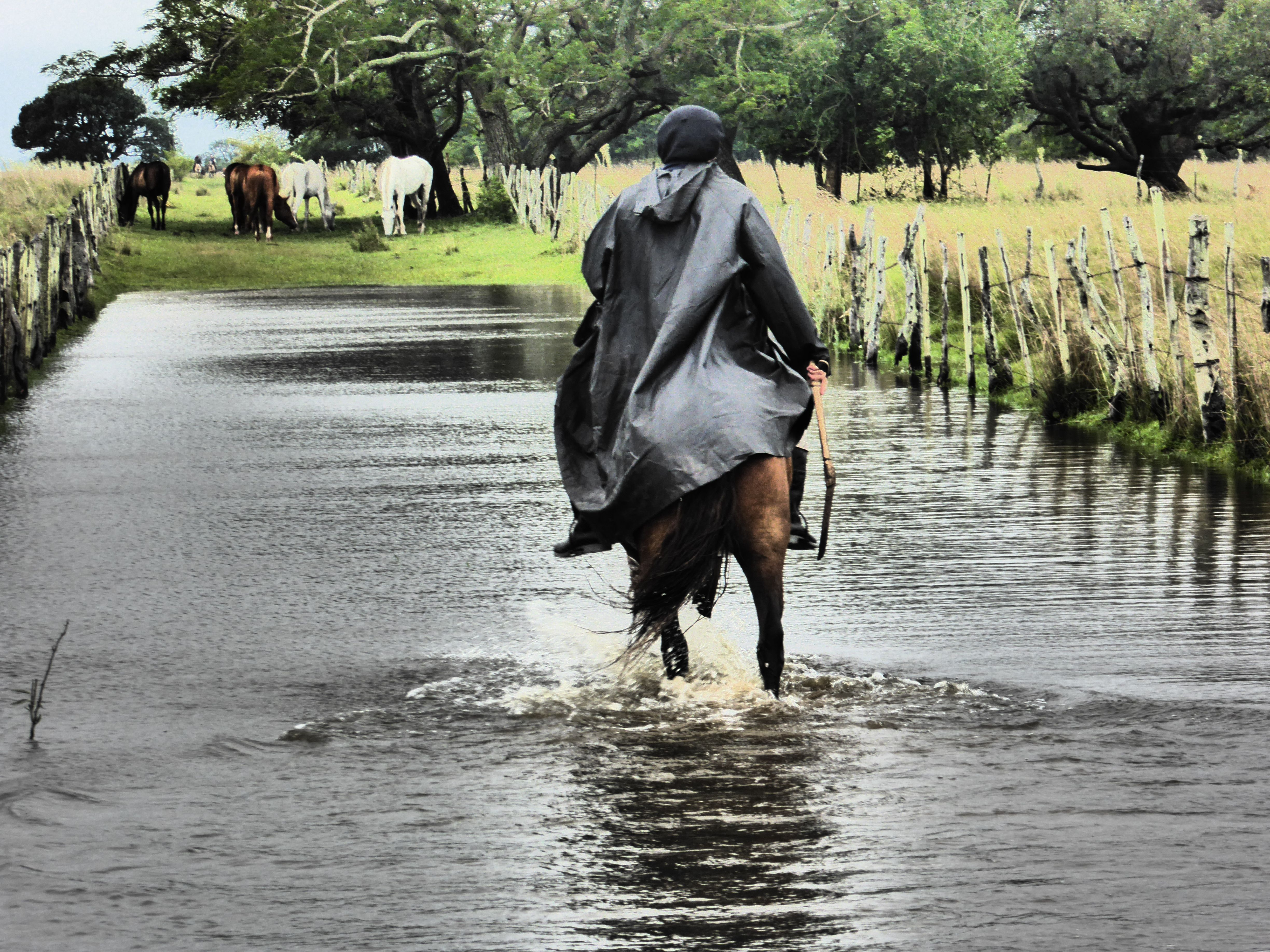 GAUCHO - THROUGH THE FIELDS - DON JOACQUIN - ESQUINA, ARGENTINA