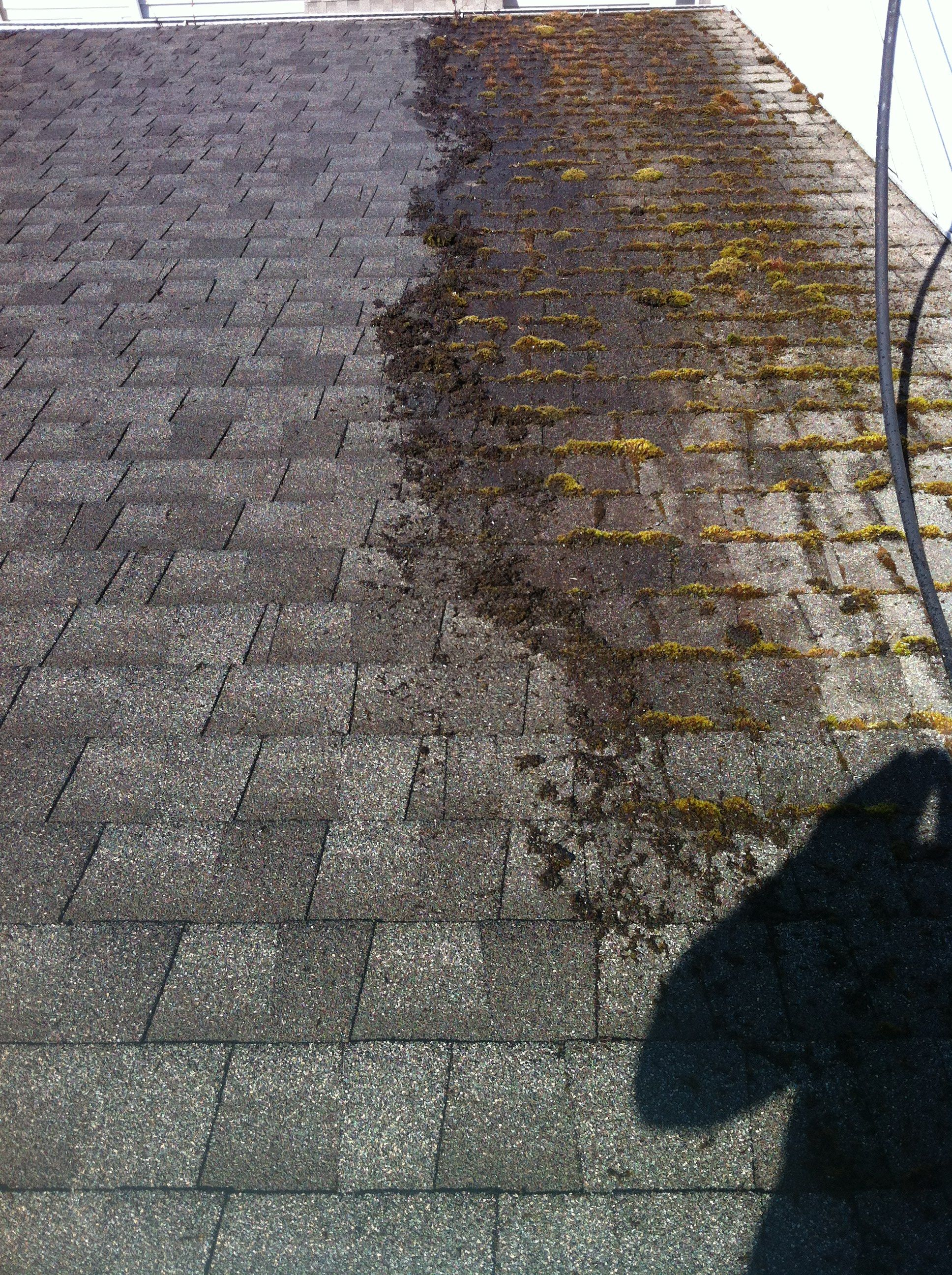 We Safely Remove Moss And Algae From Roofs.