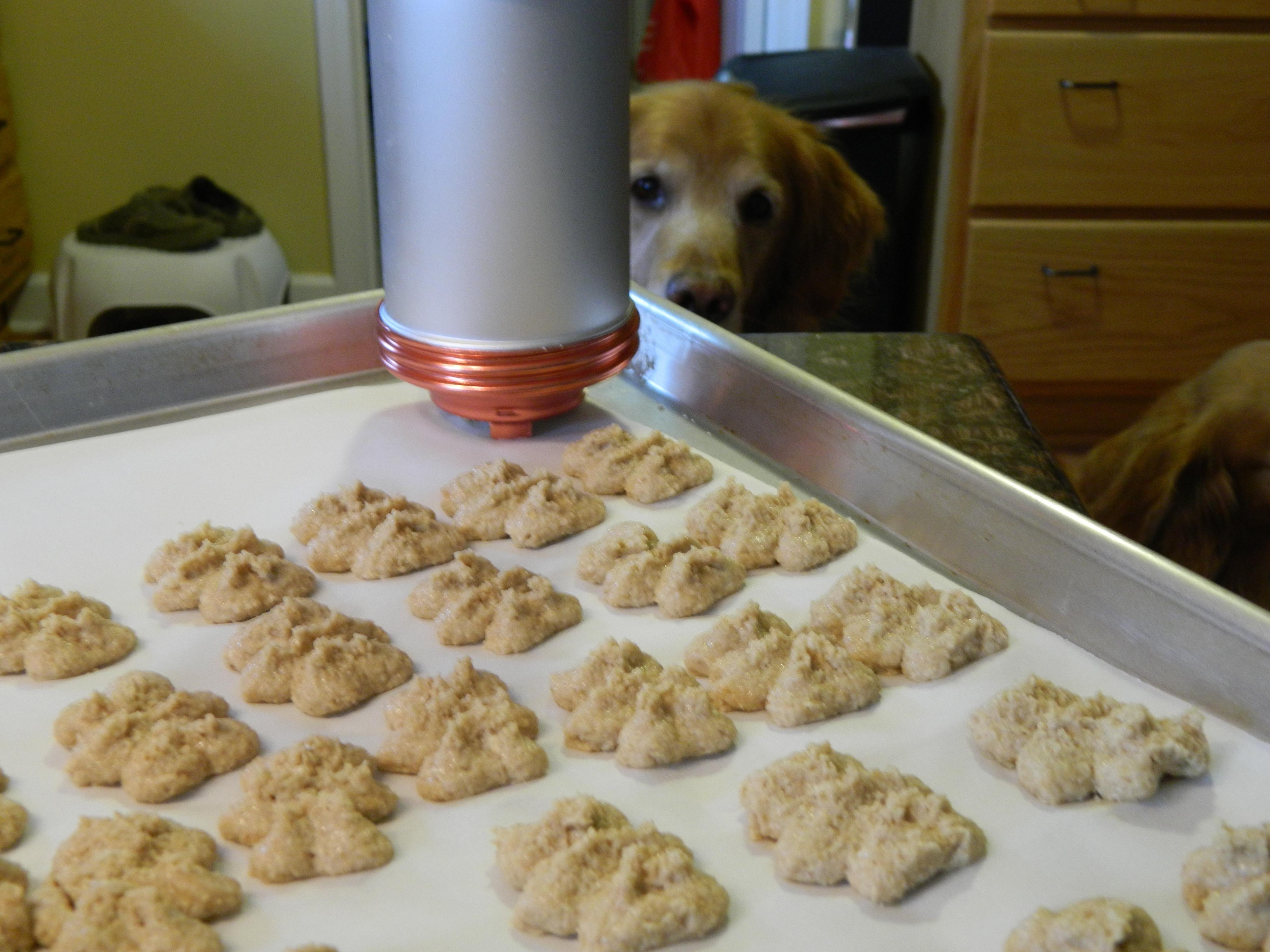Cookie Press Dog Treat Recipe Dog Cookie Recipes Pet Treats