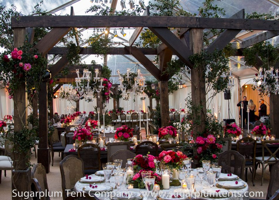 """Beautiful clear structure tent with inside """"pergola"""" over"""