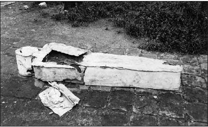 Exhumed coffin purported to be that of Louis XVII, 1894, Saint-Margaret Cemetery on rue Saint-Bernard, Paris